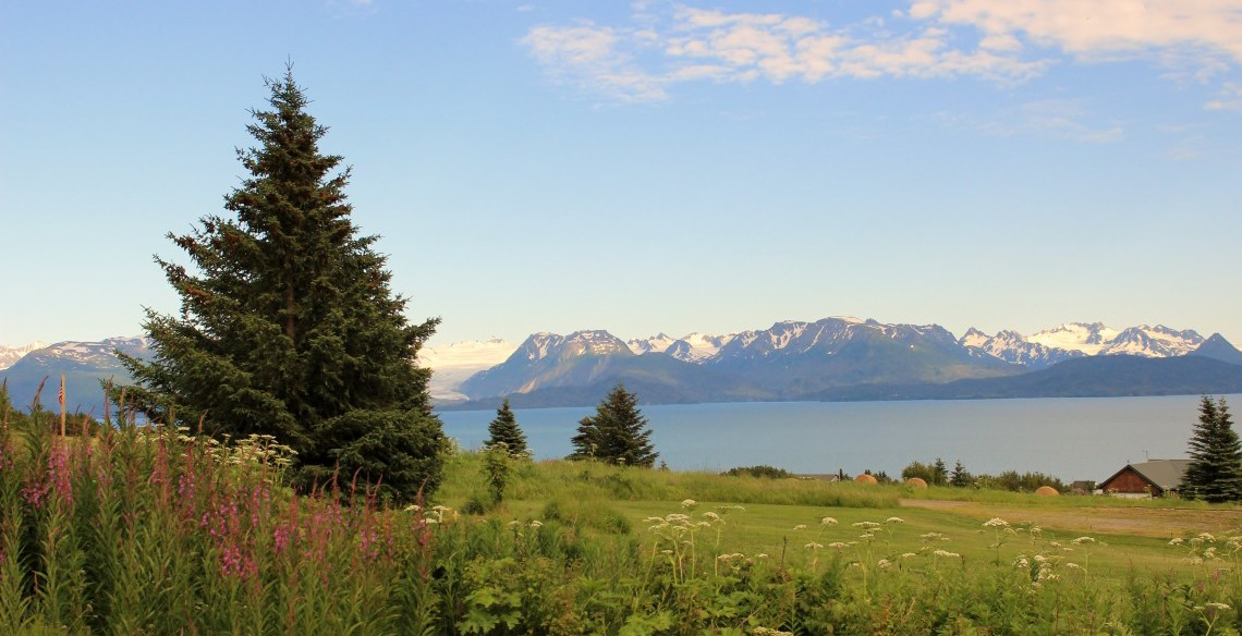 Kachemak Bay view